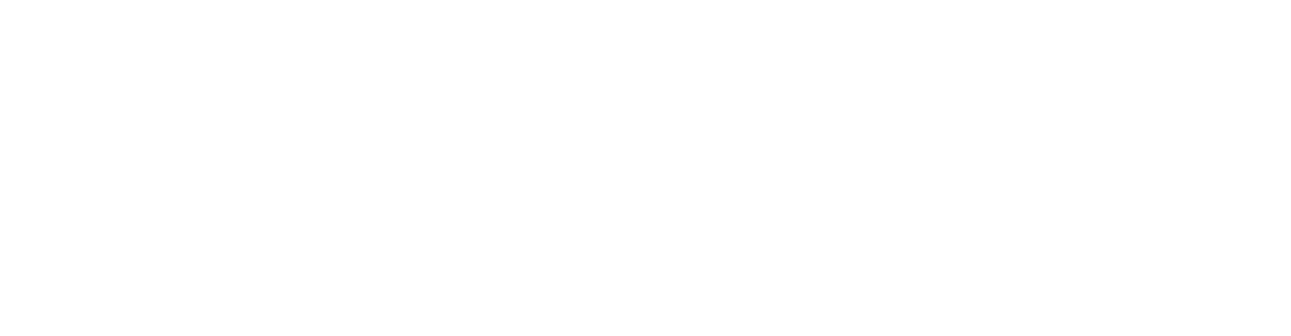 ExamFX_Logo_Outlined_White.png